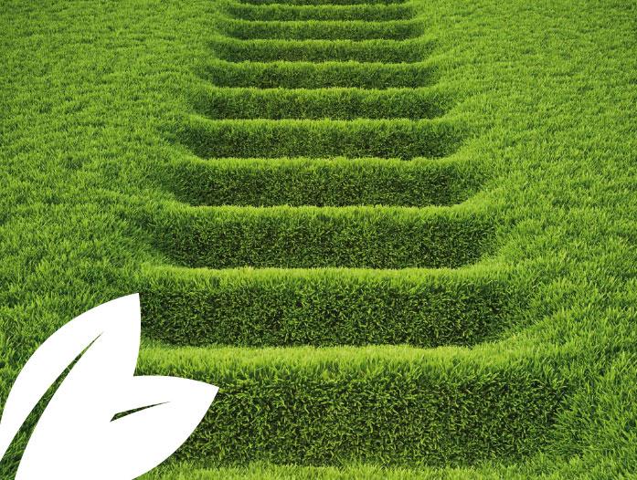 medio-ambiente-empresa