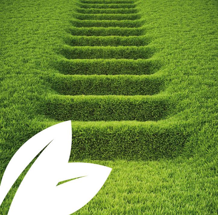 medio-ambiente-empresa2